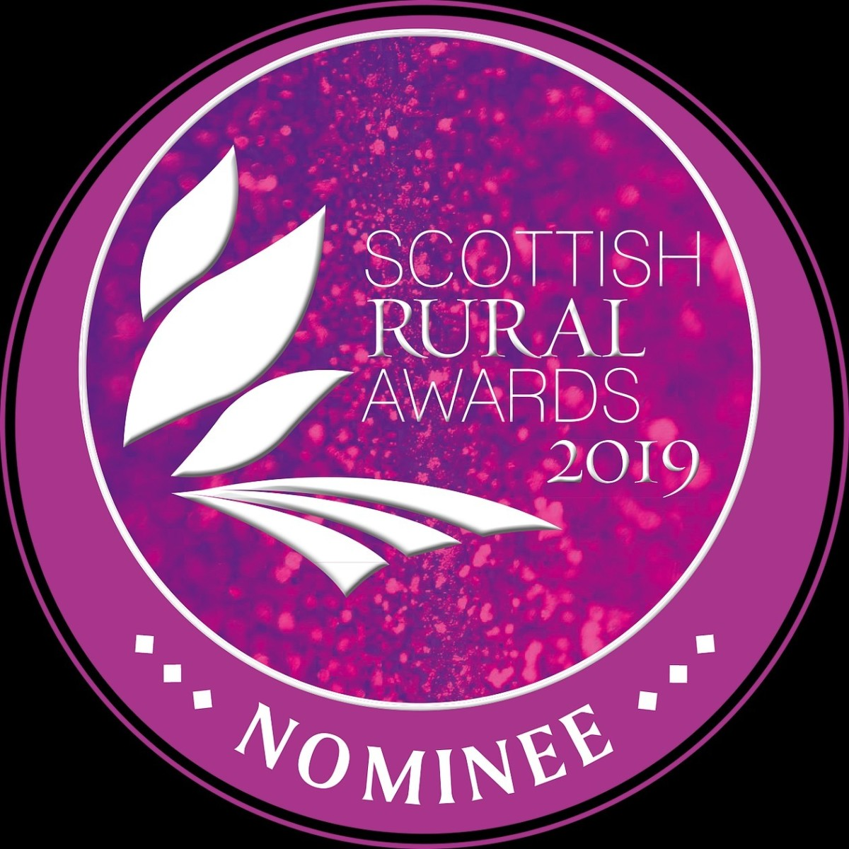 Rural Youth Project finalist of Prestigious Award